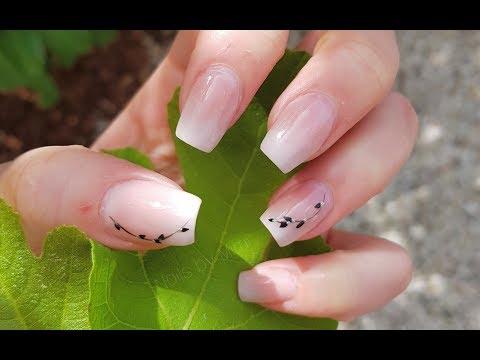 Gribok die weißen Flecke auf den Nägeln der Hände
