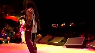 DAMIAN & STEVEN MARLEY-  Mr Marley - Reggae onThe River Live - 2013