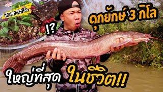 ปลาดุกยักษ์ โคตรใหญ่!! หนัก 3kg ++ [หัวครัวทัวร์ริ่ง] EP.26