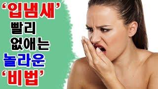 입냄새 빨리 없애는 방법 How To Remove Bad Breath