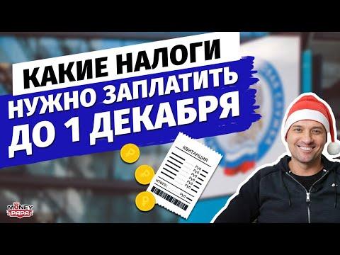 Какие налоги нужно обязательно успеть оплатить в срок до 01 декабря