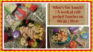 What's For Lunch? | Cold Lunch on the Go Ideas for Work or School