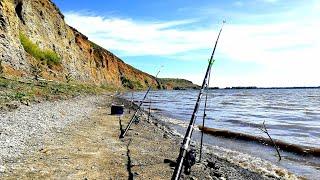 Рыбалка на дону что это такое донка