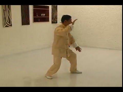 Fragmento de la Forma Original 85 movimientos estilo Yang - Tai Chi Chuan en Bogotá