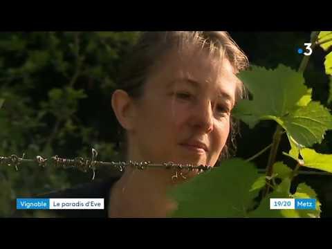 Koulchi maroc femme cherche homme
