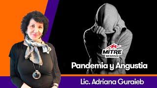 Pandemia y Angustia - Radio Mitre Mendoza