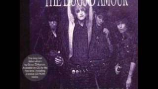 Dogs D'Amour - Dole Hero