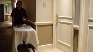 Cambro Clear Plate Covers for Room Service