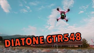 Diatone GTR548 4S 230mm FPV Racing Drone - MultiGP Gate