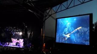 Steve Miller Band Fly Like an Eagle Live