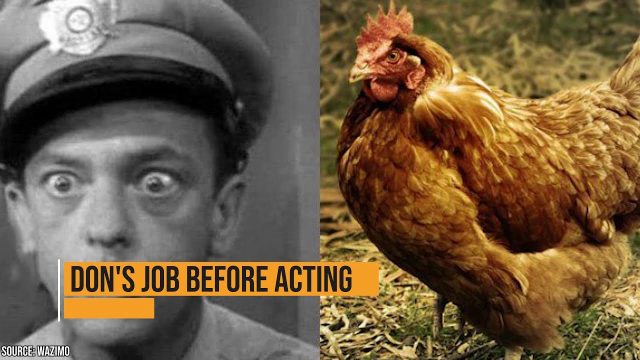 13 Things You Didn't Know About Don Knotts' Life