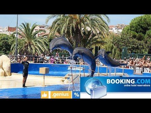Madrid Delphinarium 2019, Fabulous Travel EP-25