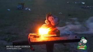 NV103 Gassy Gorilla