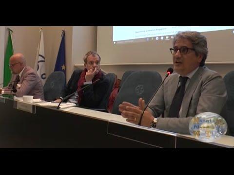 MARCELLO (COMMERCIALISTI): LEGITTIMATO IL RUOLO DI REVISIONE LEGALE DEL COLLEGIO SINDACALE. GUARDA IL VIDEO