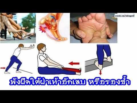 รองเท้ากระดูกสำหรับ strephexopodia