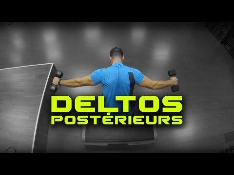 Les normes du poids dans le bodybuilding