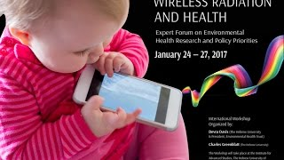 Wireless and Health Expert Forum: Excerpts From Lectures January 2017