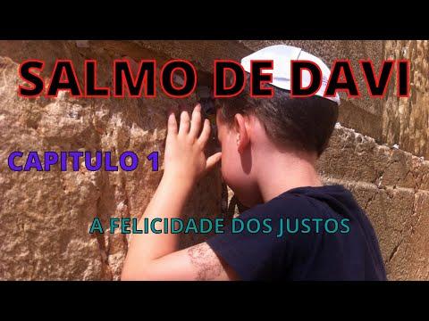 SALMO 1  A FELICIDADE DOS JUSTOS E O CASTIGO DOS IMPOS - SALMO DE DAVI
