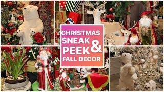 CHRISTMAS DECORATING 2020 SNEAK PEEK / Last Fall Video Of The Season