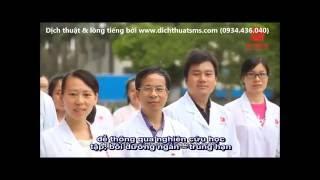 Evergreen - Dịch Hoa - Việt, chèn phụ đề & lồng tiếng Việt