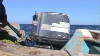 preview picture of video 'Buceo extremo de callo en Bahia de Kino.'
