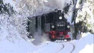preview picture of video 'Weißeritztalbahn 2012 - Mit der 99 1608-1 von Schmiedeberg nach Obercarsdorf'