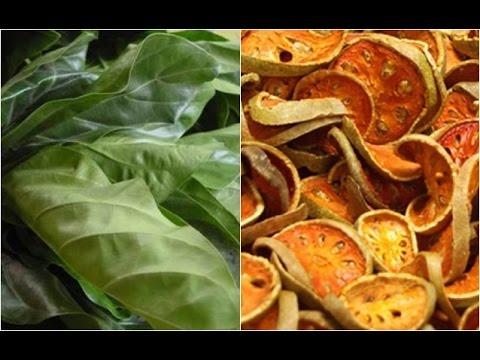 การทดสอบพืชและเสียงสะท้อนปรสิต
