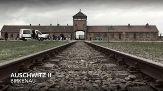 Videoproductie verslag Auschwitz 2018