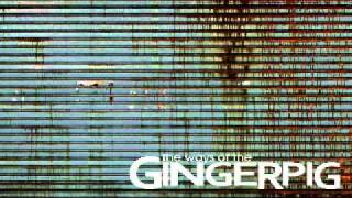 Gingerpig - Dimlighted Heart video
