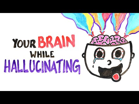 What Happens in Your Brain When You Hallucinate?