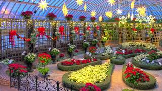 Only In Pittsburgh: Phipps Conservatory And Botanical Gardens