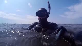 Подводная охота 26 августа 2017 Астрахань, Сазаны!!!