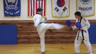 Front Kick + Round House Kick + Side Kick + Double Punch Combination