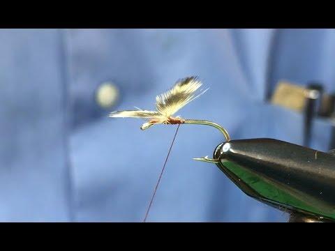 Tutorial on Tying Spent Wings