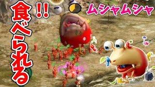 ピクミン♯2 戦って、食べられて。チャッピー倒して先に進むと、ある出会いが?ピクミン1を実況プレイ!