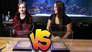 I WASN'T EXPECTING THIS!!  Nano aquarium scape off!