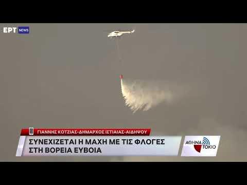Συνεχίζεται η μάχη με τις φλόγες στη Βόρεια Εύβοια   08/08/2021   ΕΡΤ