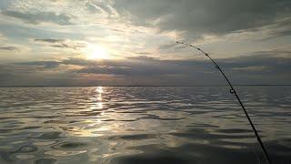 Отчеты о рыбалке на реке себла
