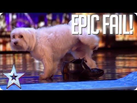 TOP EPIC FAILS! | Britain's Got Talent (видео)