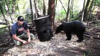 How to Field Judge a Black Bear