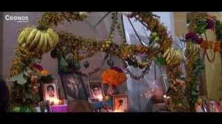 preview picture of video 'NOCHE DE FLORES EN MIAHUATLÁN 2014'