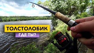 Базар пнз пенза рыбалка