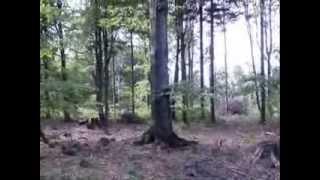 Video Ema Mele Maso - S.T.R.O.M.    2014