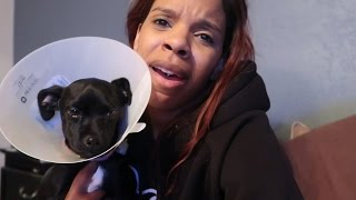 DAX GETS SURGERY! | Daily Dose S2Ep224