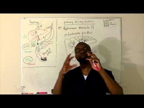 Билиарный цирроз стадия 4