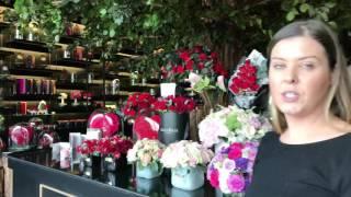 A Visit To Forever Rose CityWalk - Dubai
