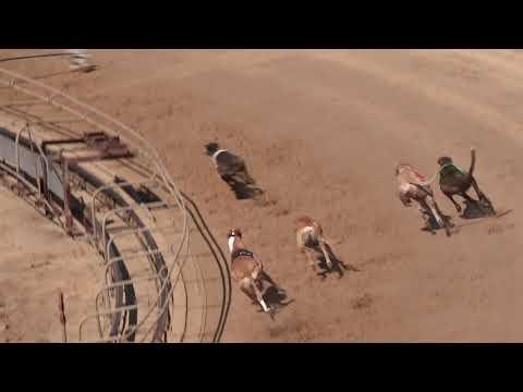 Race 40