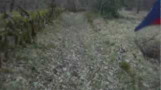preview picture of video 'Descente de notre spot Vtt  (Luzech)'