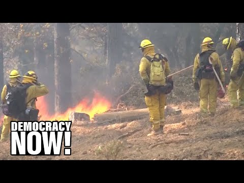 """""""A Human Tragedy"""": Wildfires Reveal California's Reliance on Incarcerated Firefighters"""