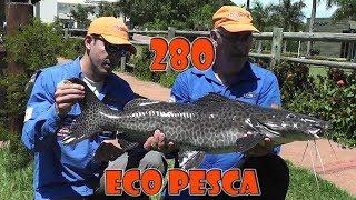 Programa Fishingtur na Tv 280 - Pesqueiro EcoPesca